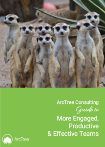 arctree ebook - productive and effective teams